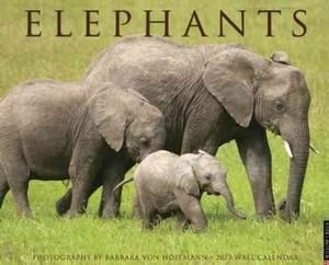 Elephants 2013 Wall Calendar